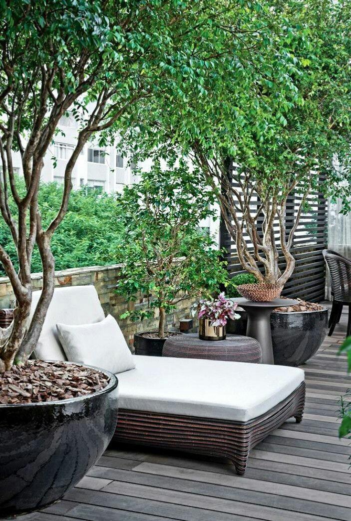 بام سبز Roofgarden